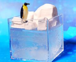 南極・北極展開催!