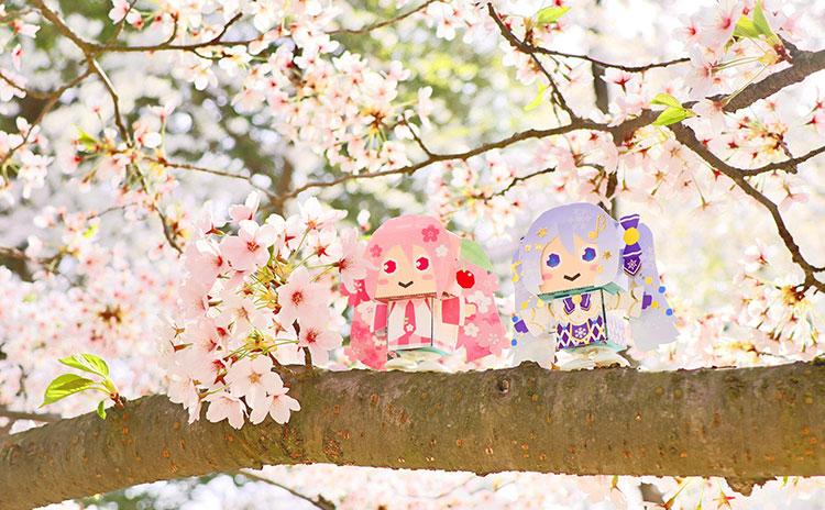 ゴールデンウィークも雪ミクと桜ミクが盛り上がってます!